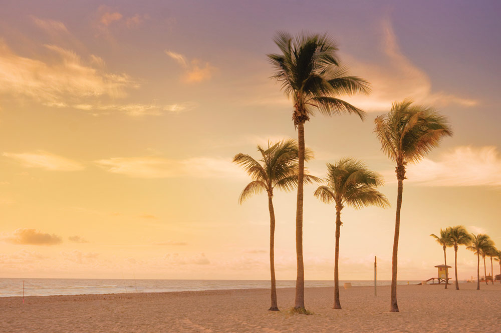 Wyndham Trips Discount Vacation Packages To Fort Lauderdale
